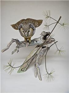 LIFE-SIZE BOREAL OWL WITH MOTH