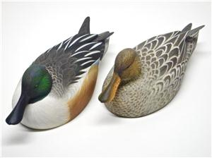 MINIATURE SMOOTHIE NORTHERN SHOVELER PAIR