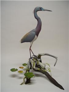 LIFESIZE TRI COLORED HERON &SOUTHERN LEOPARD FROG
